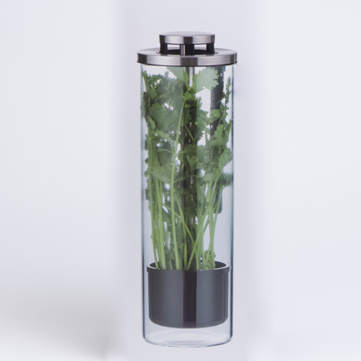 Picture of Herb Keeper and Herb Storage Container