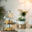 صورة حامل كعك بمستويين مع غطاء زجاجي